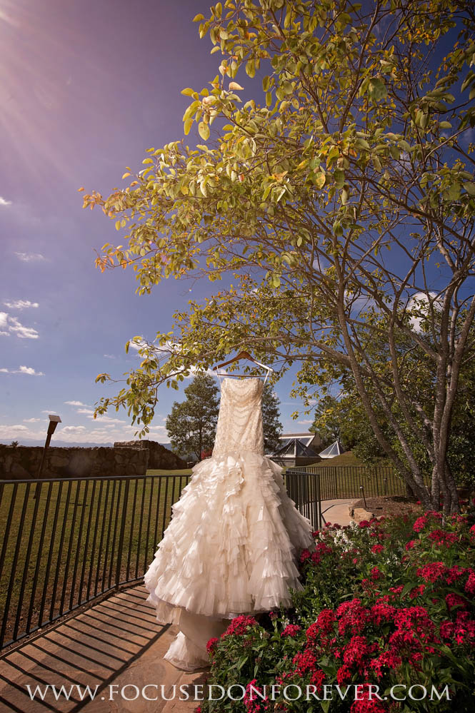 Wedding: Ivy and Cy married at Omni Grove Park Hotel